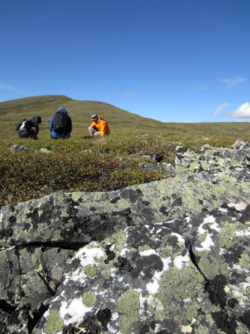 Alaska fieldwork complete! August 2011